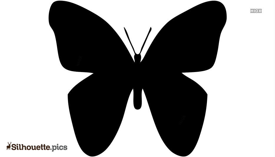 Cartoon Flying Butterfly Silhouette Drawing