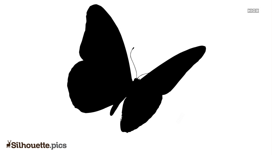 Cartoon Flying Butterfly Silhouette Vector
