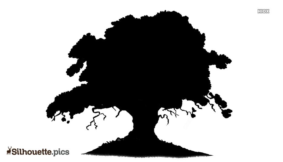 Cartoon Oak Tree Silhouette