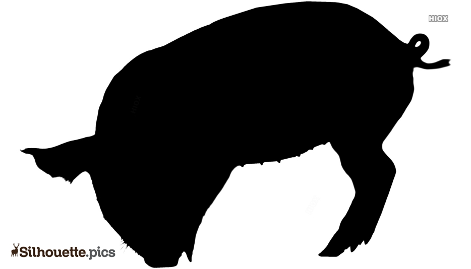 Cartoon Pig Vector Silhouette Images, Pictures