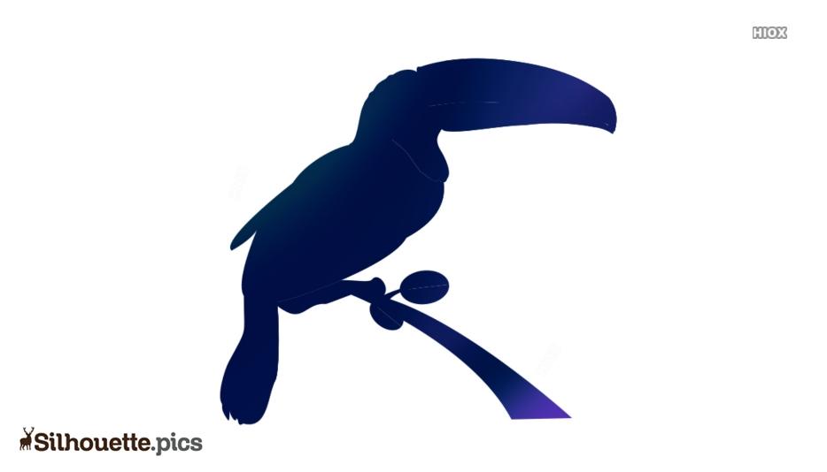 Cartoon Toucan Silhouette Illustration