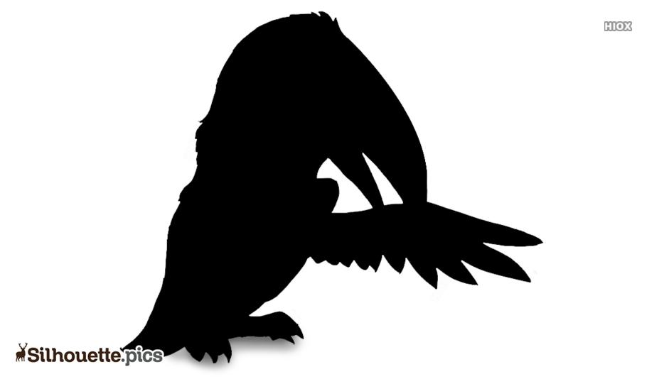 Cartoon Toucan Silhouette Image