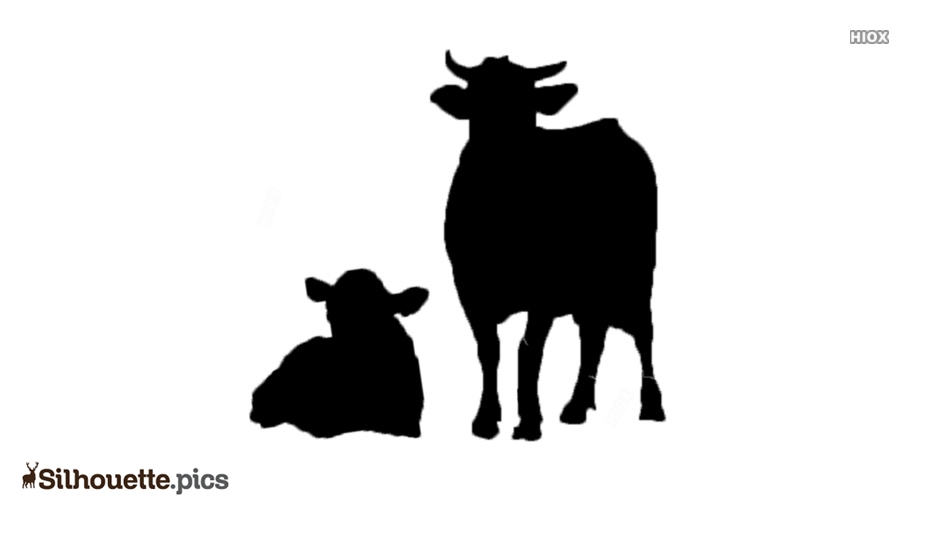 Cattle Silhouette Images, Pictures