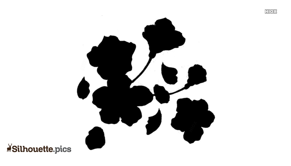 Cherry Blossom Silhouette Vector And Graphics