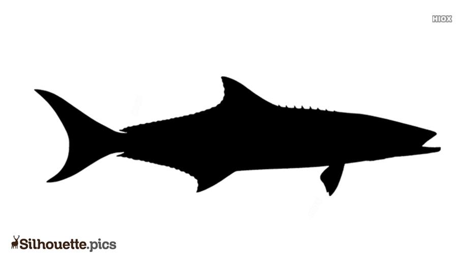 Cobia Fish Silhouette Icon Image