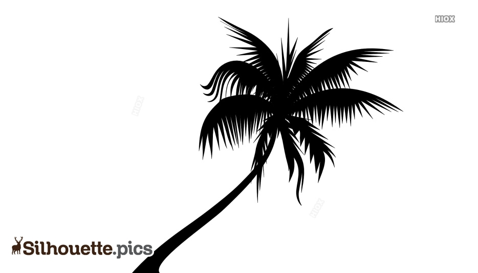 Beach Silhouette Images