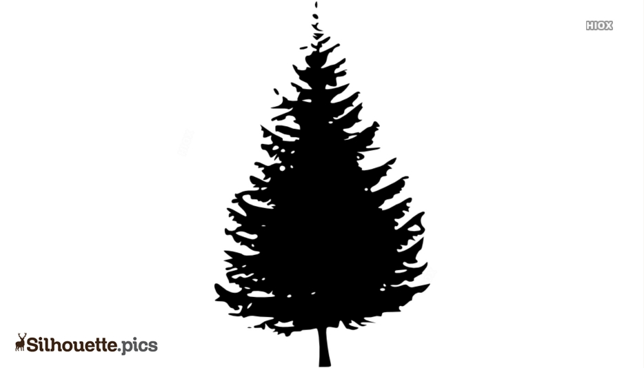 Cool Tree Drawing Silhouette Vector And Graphics