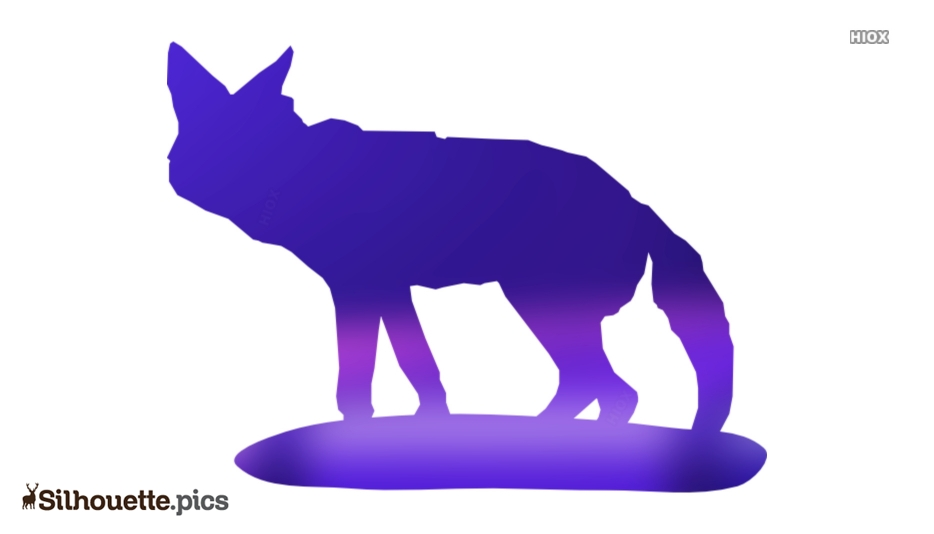Coyote Silhouette Images