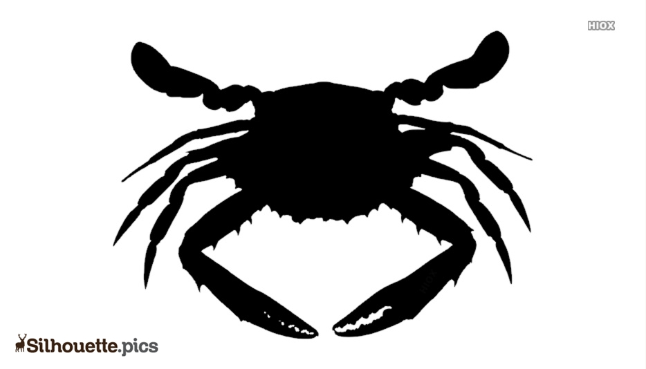 Crab Drawing Silhouette