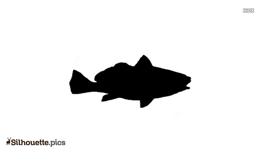 Croaker Fish Silhouette Picture