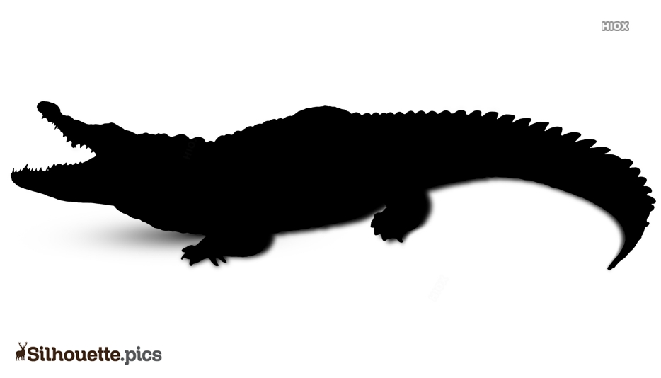 Crocodile Silhouette Images