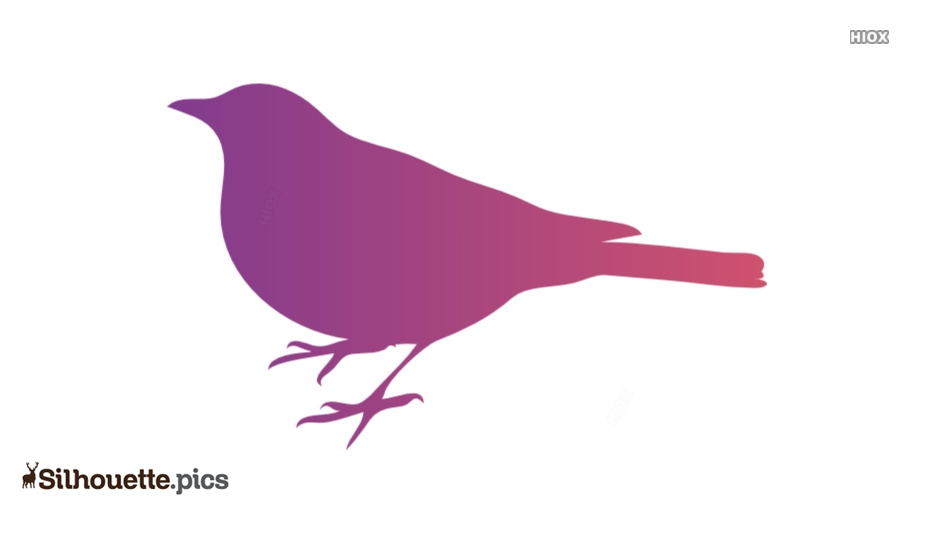 Fat Bird Silhouette Images