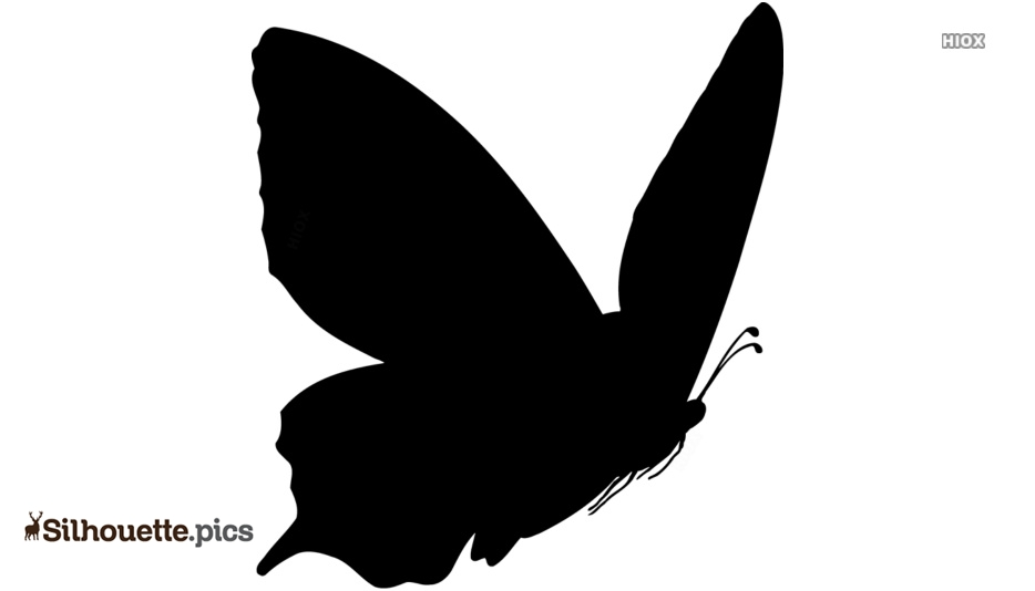 Cute Flying Butterfly Silhouette