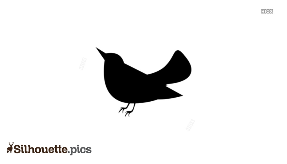 Cute Little Bird Silhouette