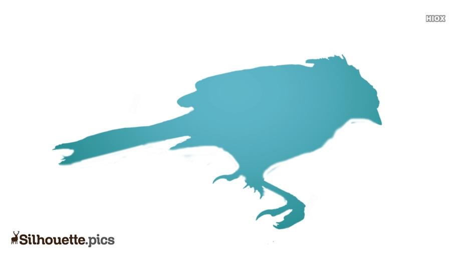 Dead Bird Silhouette Image