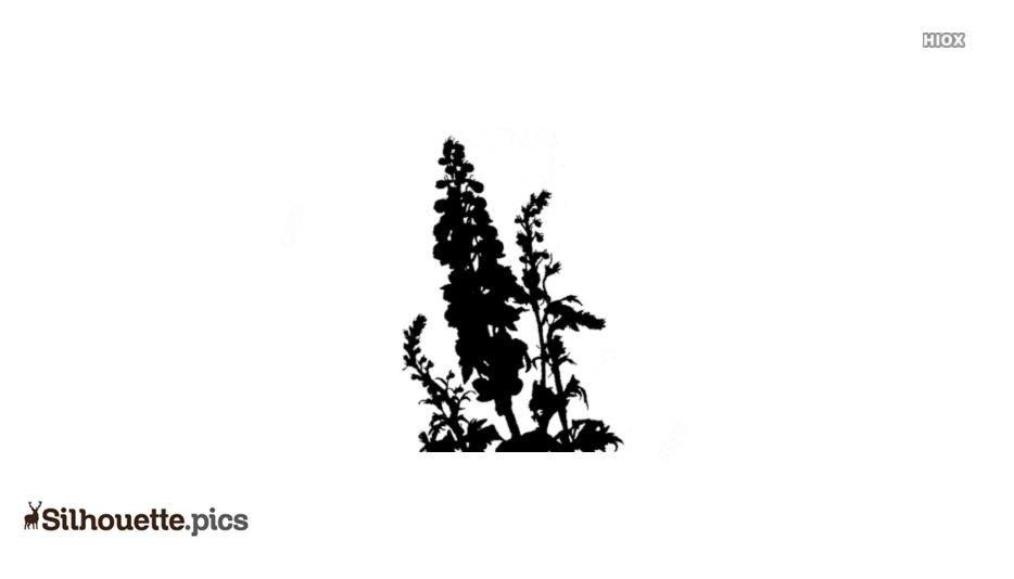Delphinium Silhouette Vector