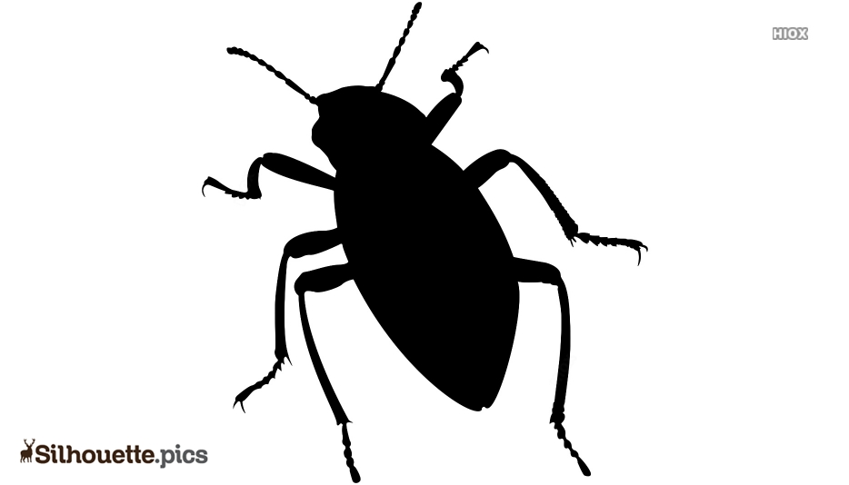 Diving Beetle Silhouette Free Vector Art