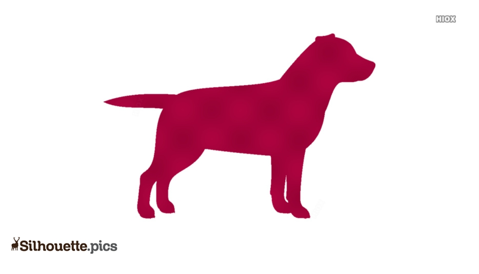 Dog Standing Side Pose Silhouette