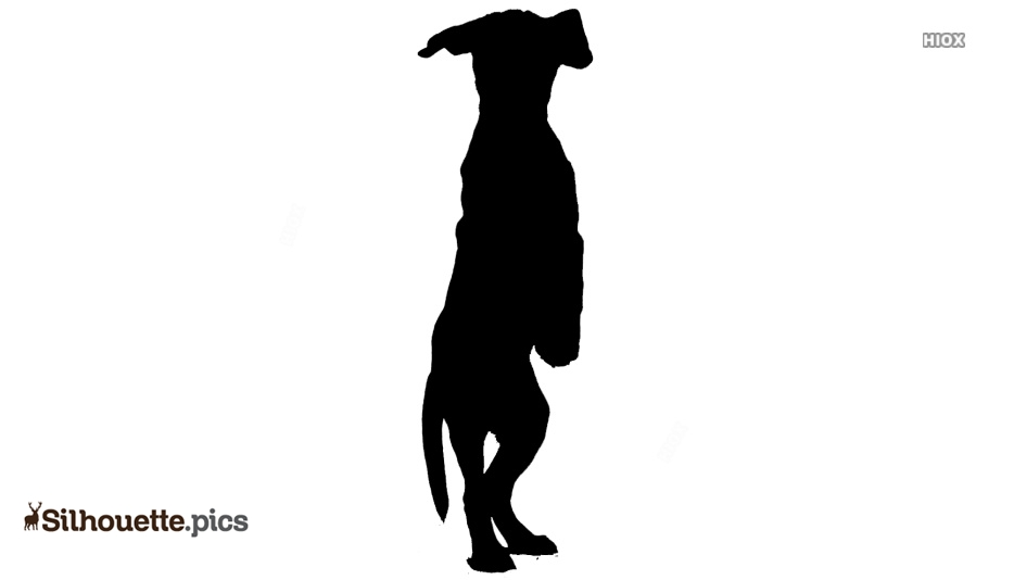 Dog Standing Up Silhouette Illustration