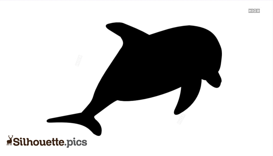 Dolphin Drawing Silhouette