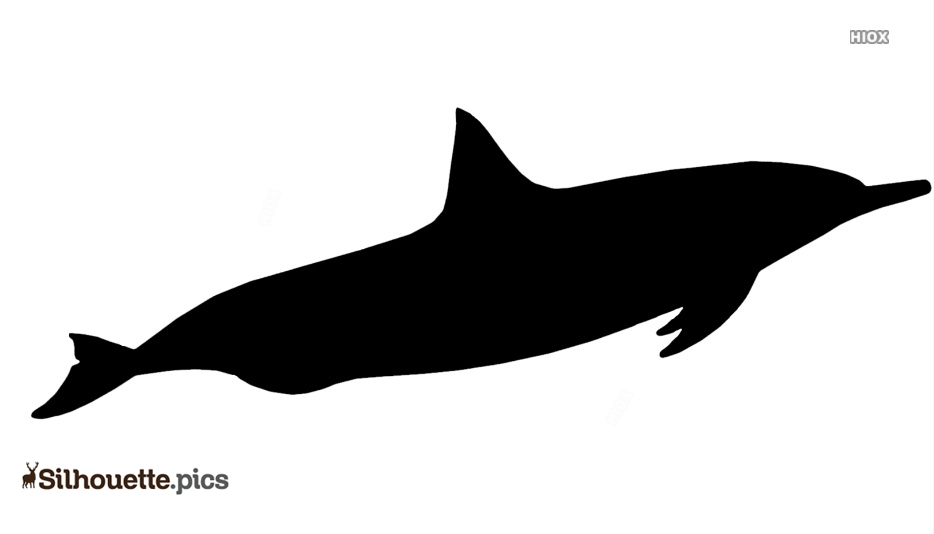 Dolphin Silhouette Image