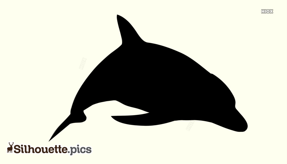Dolphin Silhouette Images