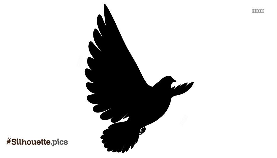 Doves Flying Silhouette Image
