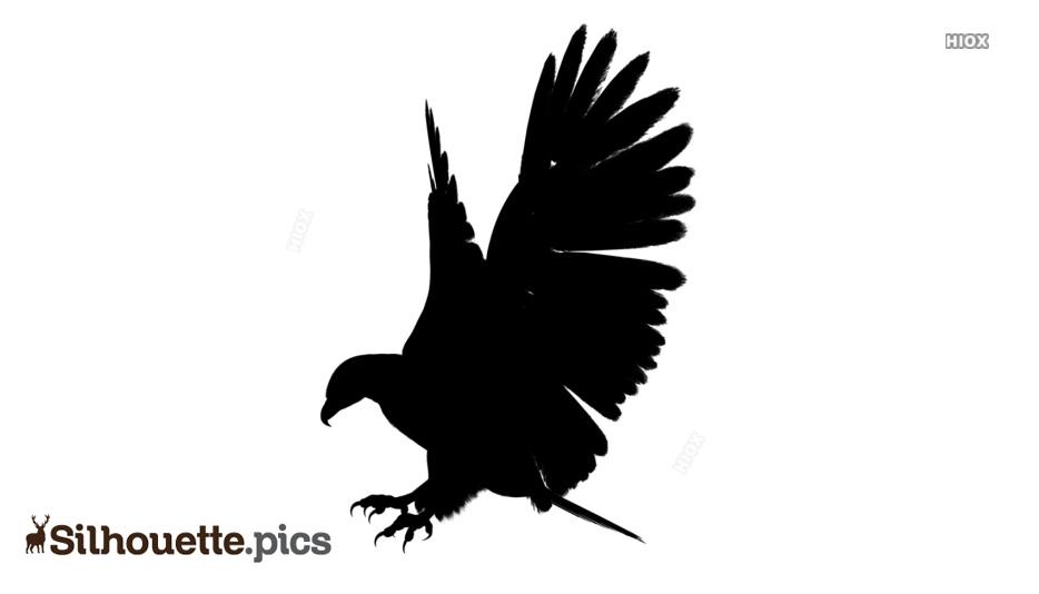 Eagle Bird Landing Clipart Silhouette