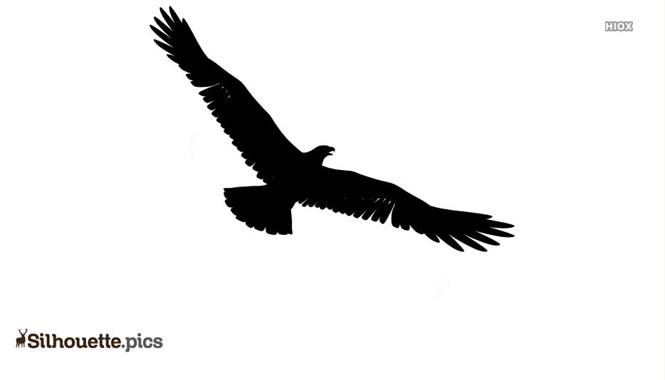 Eagle Black And White Silhouette
