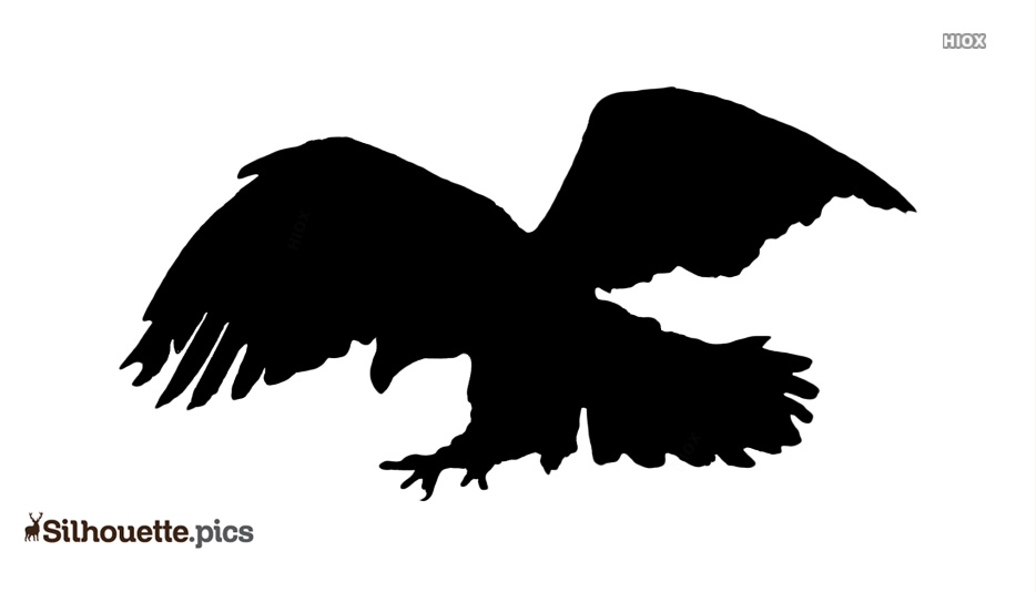 Eagle Flying Silhouette Black And White