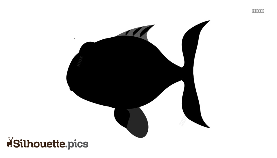Vector PNG Silhouette Clipart Images, Pictures