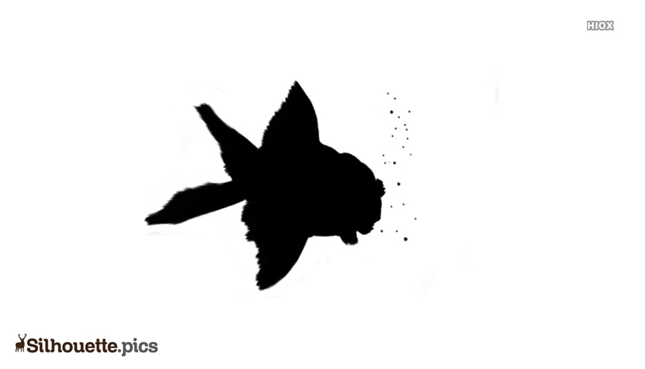 Fish Drawing Silhouette Clip Art Picture