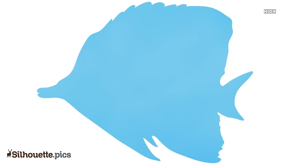 Fish Drawing Silhouette Clip Art Image Illustration