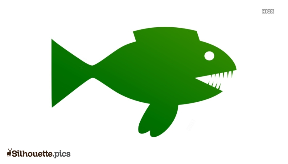 Fish Silhouette Vector And Graphics