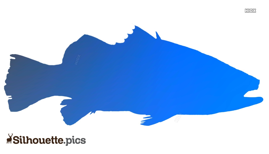 Blue Silhouette Images