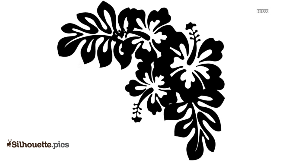 Floral Design Silhouette Image And Vector
