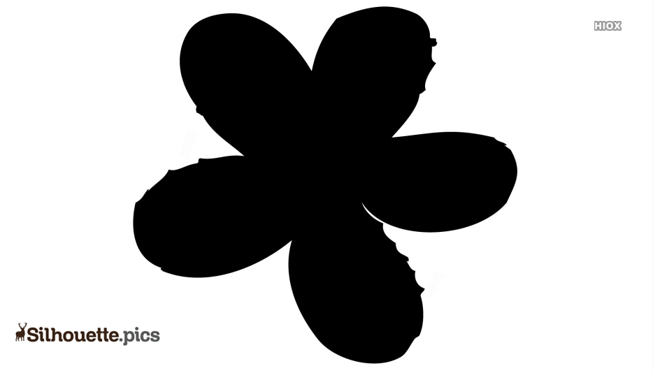 Flower Drawing Silhouette Picture