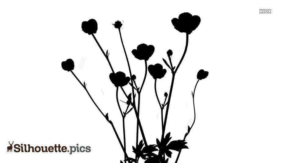 Flower Plant Silhouette