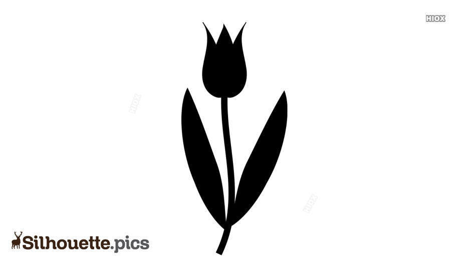 Flower Silhouette Images