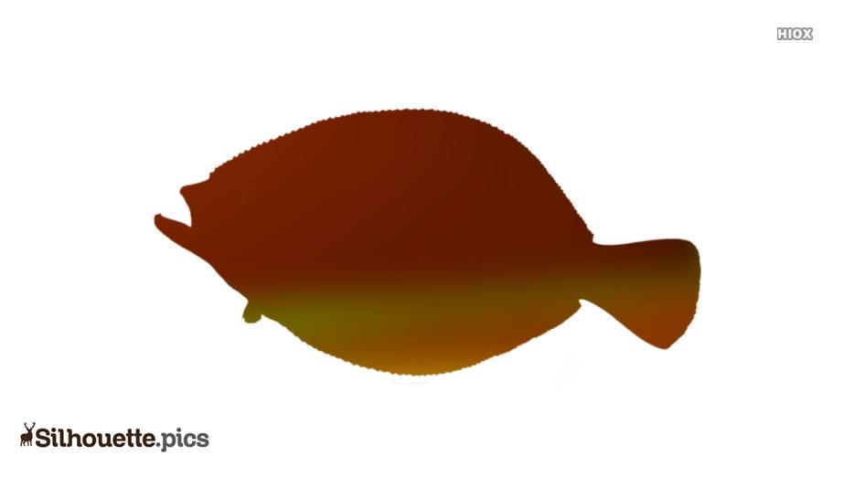 Fluke Fish Silhouette Illustration