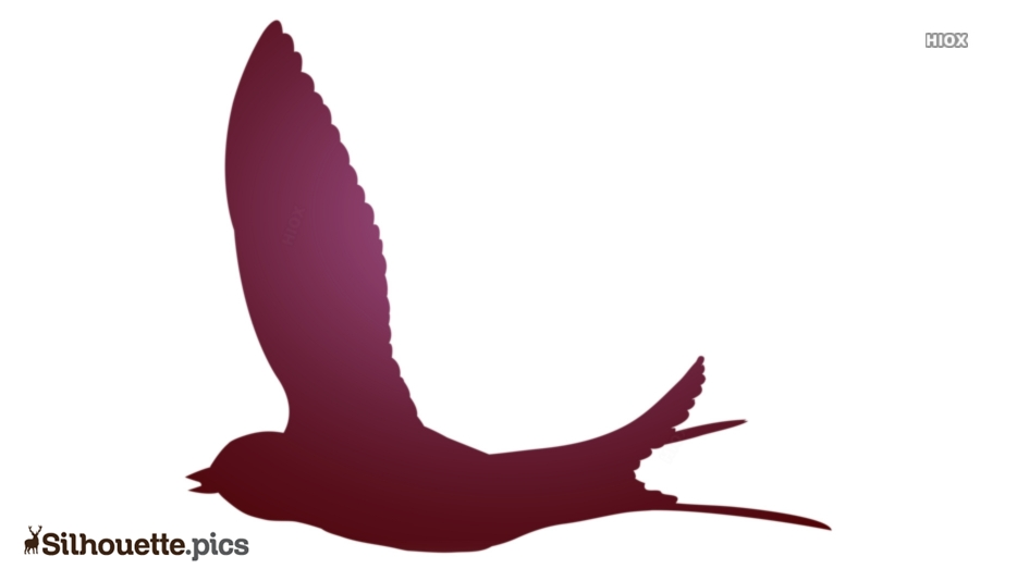 Flying Bird Cartoons Silhouette Background
