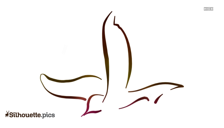 Bird Outline Silhouette Images