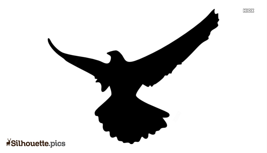 Birds Silhouette Images, Cliparts