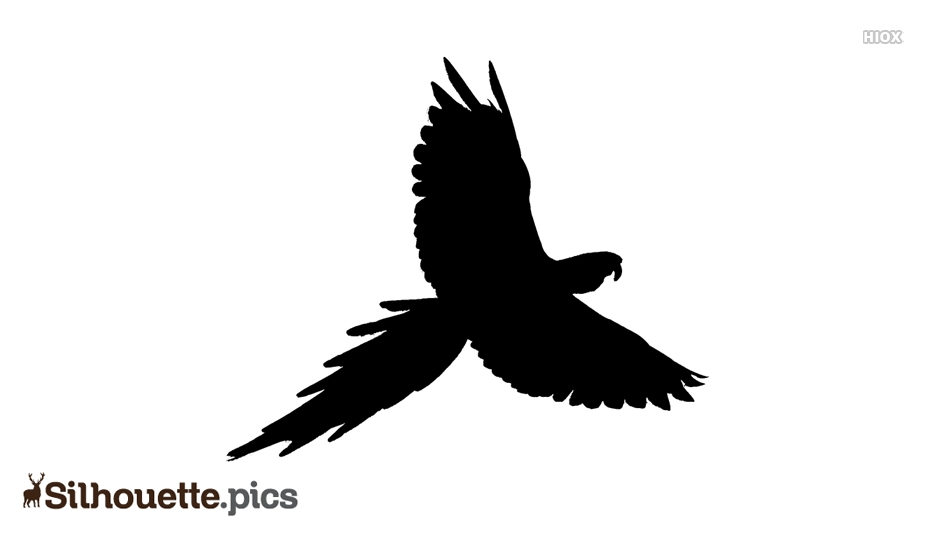 Flying Bird Silhouette Vector Download