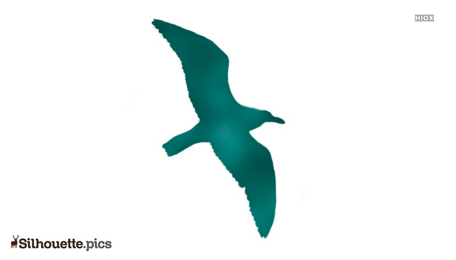 Flying Seagull Silhouette Vector Art