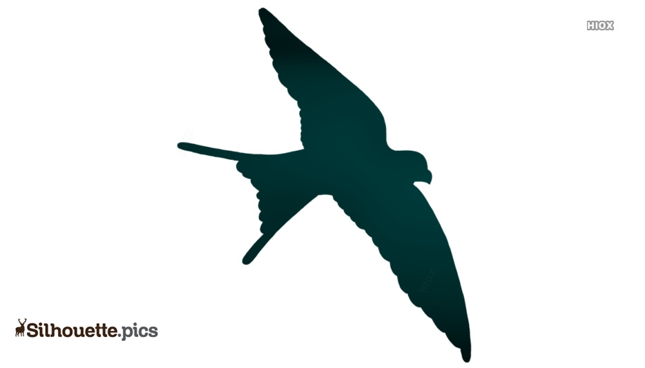 Flying Swallow Bird Silhouette Vector