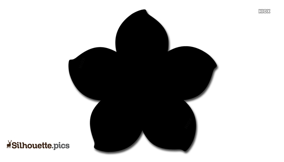 Forget Me Not Flowers Silhouette Image