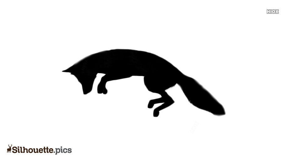 Fox Jumping Silhouette