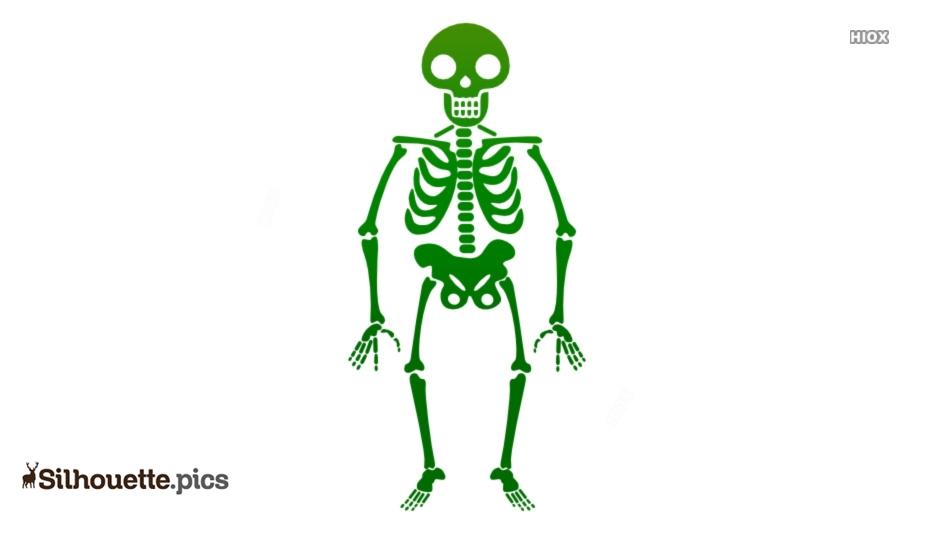 Free Cartoon Skeleton Silhouette