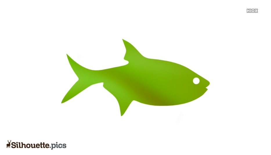 Free Fish Drawing Silhouette Picture